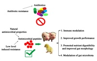 The discovery and testing of novel antimicrobials for swine health