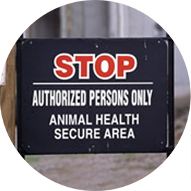 Biosecurity Thumbnail